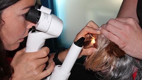 oftalmologia-veterinario-la-moraleja